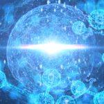 「生命とは何か」という疑問がバイオテクノロジーを進化させる