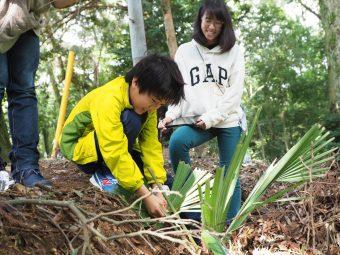 「森のDNA図鑑」Workshopの様子(撮影:田邊アツシ 写真提供:山口情報芸術センター[YCAM])