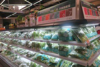盒馬鮮生の朝採り野菜販売コーナー