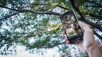 六本木ヒルズ内の日本庭園で坂本龍一氏の楽曲を聴く。木々は緑だが、スマホ画面では紅葉が舞う。曲の雰囲気にあわせたARアニメーション