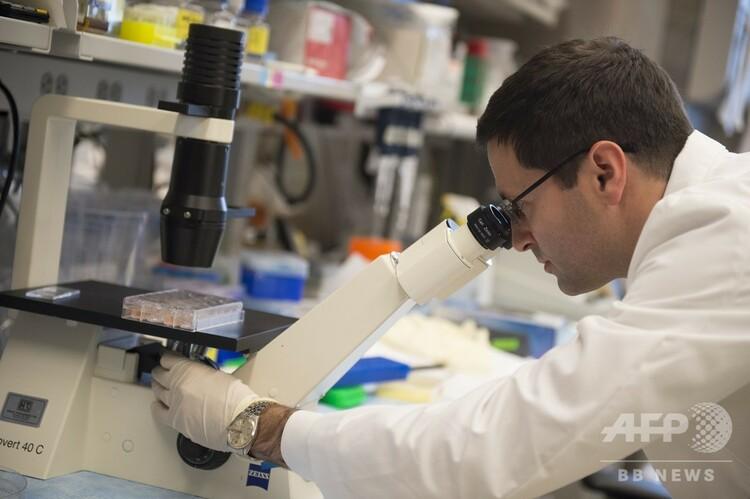 顕微鏡で検査を行う米国立がん研究所の医師(2014年5月29日撮影、資料写真)。(c)AFP PHOTO / Saul LOEB