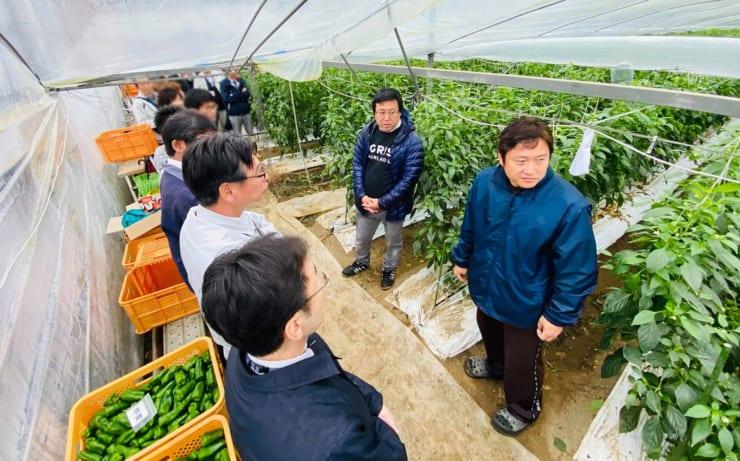 自動収穫ロボットを視察する宮崎県内農業関係者(プレスリリースより)