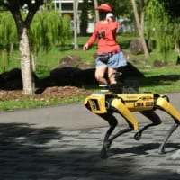 ロボット犬、公園で対人距離パトロール シンガポール