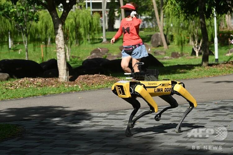 シンガポールの公園で試験運用されているロボット犬「スポット」と、そばを走るランナー(2020年5月8日撮影)。(c)Roslan RAHMAN / AFP