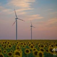 EU、再生エネが最大の発電源に 化石燃料上回る