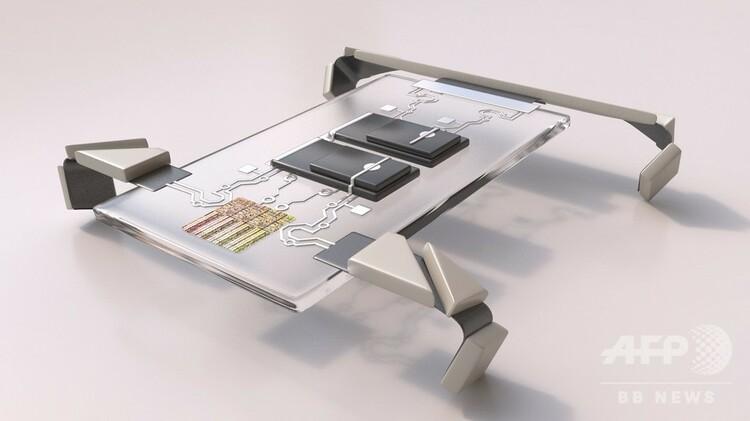 極小の四足歩行ロボットの3D画像。コーネル大学/クリストフ・ホフマン氏提供(2020年8月26日入手)。(c)AFP PHOTO /CORNELL UNIVERSITY/CHRISTOP HOHMANN
