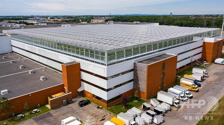 屋上に設けられた世界最大の温室。カナダ・モントリオールで(2020年7月22日撮影)。(c)Sebastien St-Jean / AFP