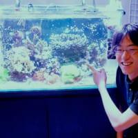 虎ノ門のビル内に沖縄の海を再現する~環境移送技術ベンチャーのイノカ