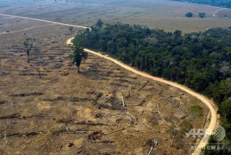 ブラジル・ロンドアリ州の延焼したアマゾン熱帯雨林(2019年8月24日撮影、資料写真)。(c)Carlos FABAL / AFP