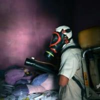 蚊には蚊を…蚊媒介感染症にバイオ技術で対抗