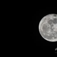 ノキアとNASA、月面に4G携帯ネットワーク設置へ