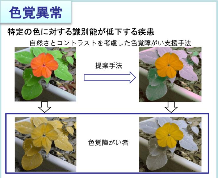 自然さと色のコントラストを考慮した画像処理を行うことで、色覚異常の疾患に対応する (画像提供:茅研究室)