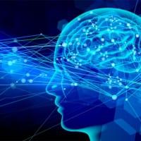 脳活動信号から聞いた内容を再現 ブレイン・コンピュータ・インターフェイス最前線