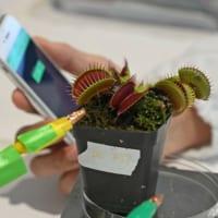 自然と技術を融合させた「ロボ植物」が現実に? シンガポール