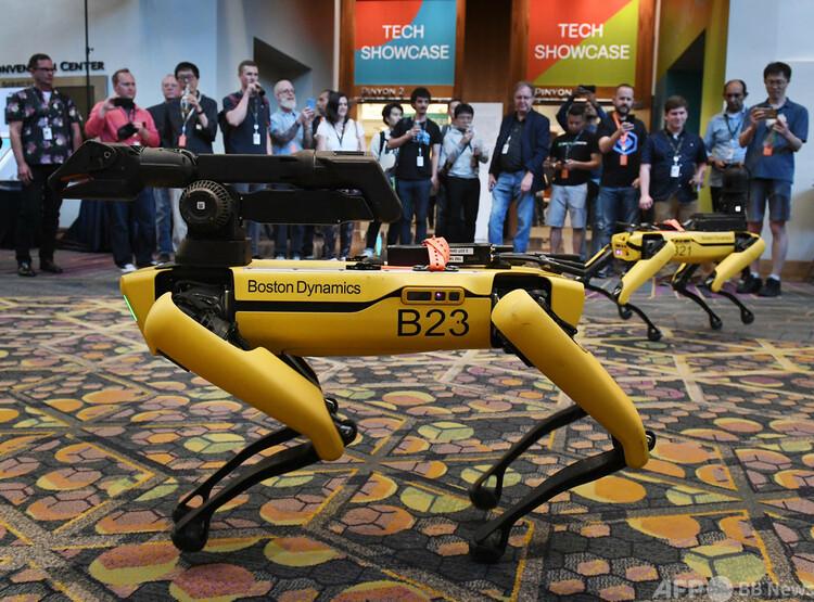 米ボストン・ダイナミクスが開発したロボット犬「スポット」(2019年6月4日撮影、資料写真)。(c)Mark RALSTON : AFP