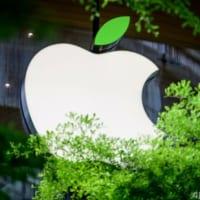 米アップル、森林再生へ220億円の基金設立 CO2削減目指す