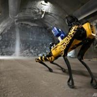 ロボット犬、 核廃棄物処分場で訓練中 フランス
