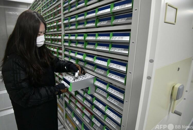 韓国・奉化の国立白頭大幹樹木園にある種子貯蔵庫センター内の長期保管庫で、種子サンプルを確認する研究員(2021年5月21日撮影)。(c)Jung Yeon-je : AFP