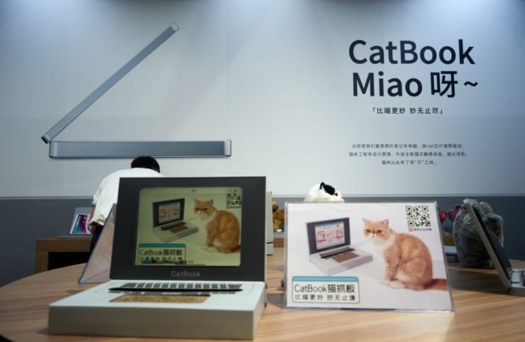 猫の爪とぎ板、CatBook Miao