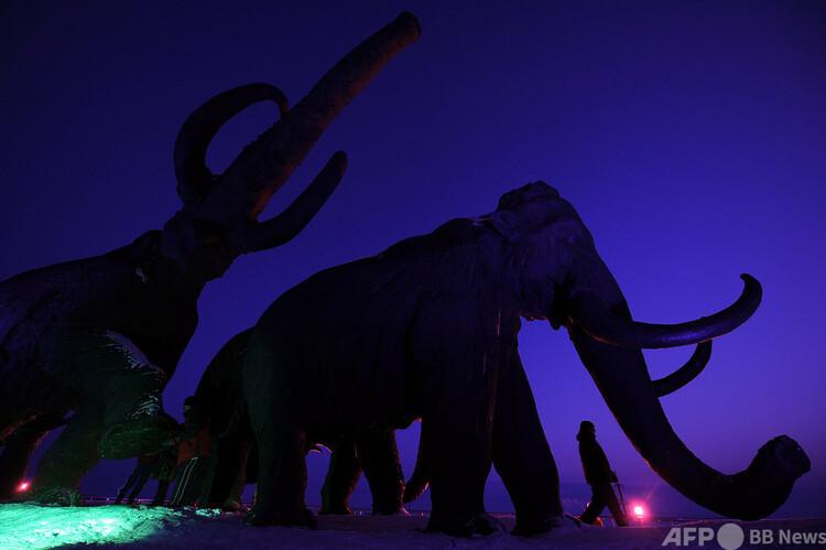 マンモスの巨大彫刻(2011年3月7日撮影、資料写真)。(c)Natalia KOLESNIKOVA : AFP