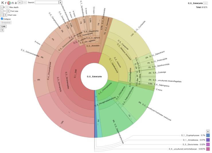 常栄寺庭園池中の環境DNAのメタバーコーディング解析結果(真核生物)